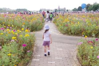 安比奈親水公園まつり - 娘はお花摘み、私はトンボ撮り